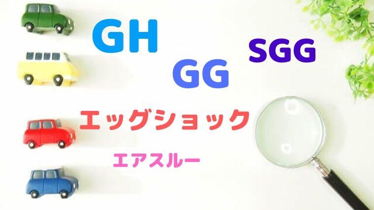 ジョイトリップGH・GG・SGGどれが良い?
