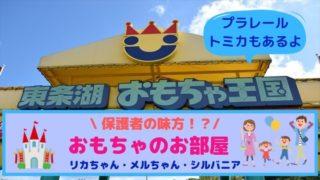 東条湖おもちゃ王国のおもちゃのお部屋がおすすめ